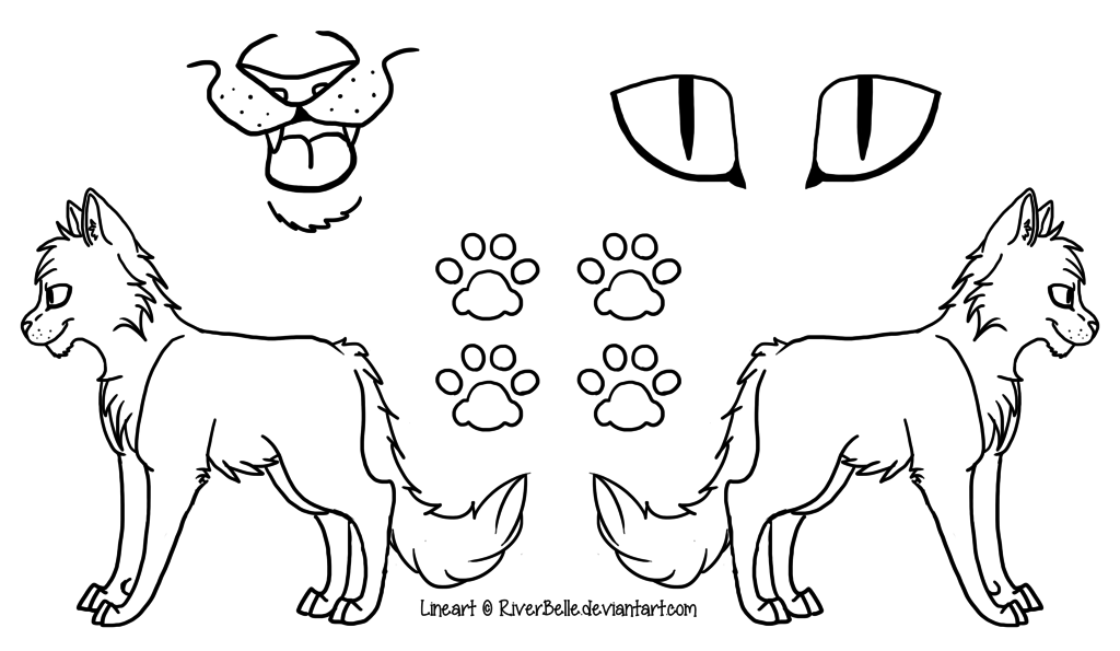 cat_reference_sheet__png_version__by_riverbelle-d6ayse0.png