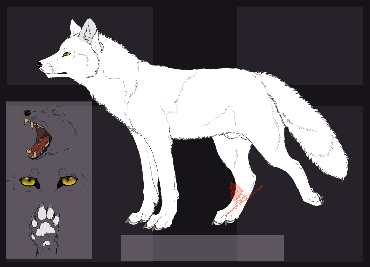 free_fox_ref_lineart_by_caneage-d6cn3j6.png